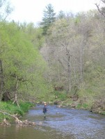 Fishing for trout in western Wisconsin