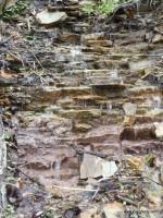 A spring-fed cascade in springtime.
