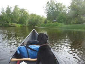 Trip Report Camping Canoeing And Fly Fishing At St
