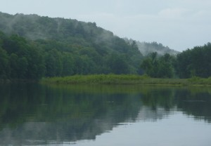 White mist, white pines on the St. Croix River
