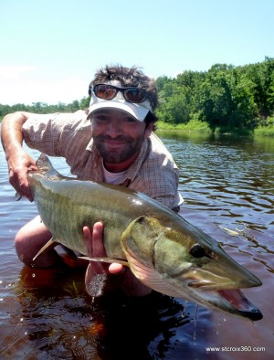 St. Croix River musky