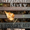 Firegrate Review cover